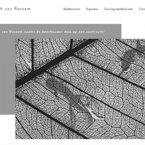Website Sarah van Rossem